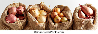 Set of various onion in sack bags