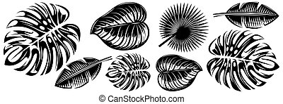 Set of various tropical leaves. Design elements. Monochrome vector illustration