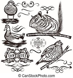 Set of vector animals and calligrap - Set of vector detailed...
