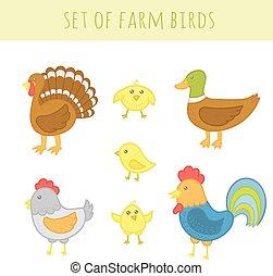 Set of vector farm birds