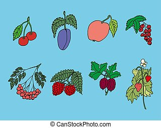 Set of vector freehand drawings of of fruits of plants