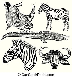 Set of vector hand drawn African animals.eps