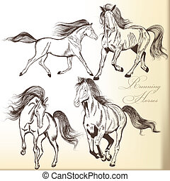 Set of vector hand drawn horses