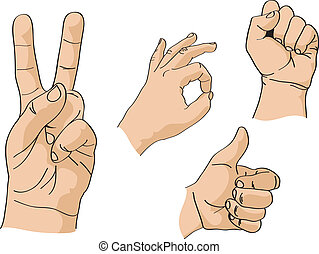 Set of vector hands
