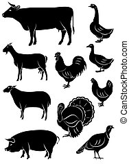 set of vector icons with farm anima
