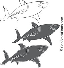 Set of vector illustrations with a great white shark.