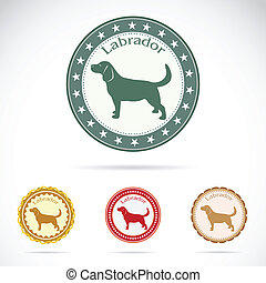 Set of vector labrador on white background
