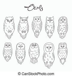 Set of vector owls, lineart