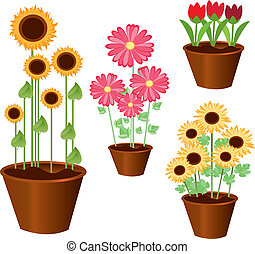 set of vector potted flowers