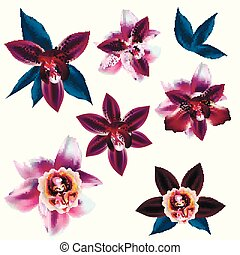 Set of vector realistic flowers for design