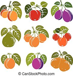 Set of vector ripe fruits and berries with green leaves, fruity trees design elements isolated on white background.