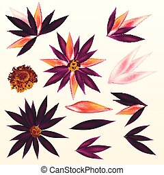 Set of vector tropical flowers for design