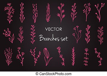 Set of vector vintage floral elements