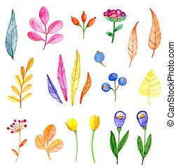 Set of vector watercolor flowers and leaves