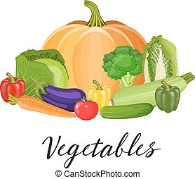 Set of vegetables. Healthy food.