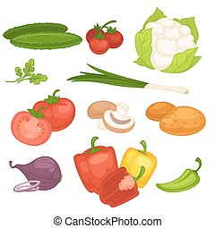 Set of vegetables illustration.