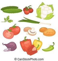 Set of vegetables illustration.