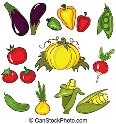Set of vegetables isolated on the white background. Design elements