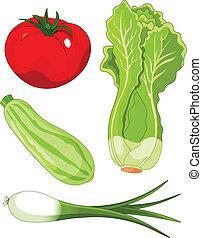 Set of vegetables5 - The  colorful set of vegetables