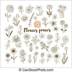 Set of vintage doodle sketch flowers on white background