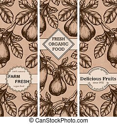 Set of vintage hand drawn sketch banners with figs. Vintage eco food drawing. Vector illustration.