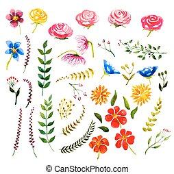 set of watercolor floral design elements. vector