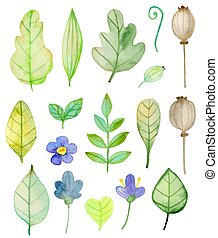 Set of watercolor flowers and green leaves