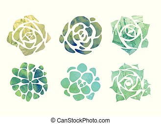 Set of watercolor succulents with a top view on a white background