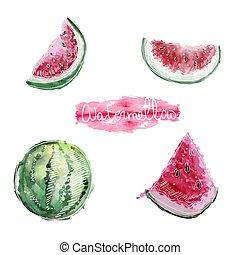 set of watermelon on white background, vector illustration