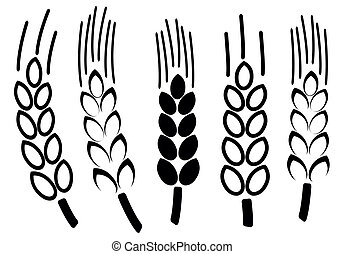 Set of wheat icons, vector