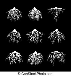 Set of White Roots Tree on black background. Vector Illustration.
