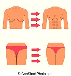 Set of White Woman Body Part. Fat and Sporty Body Icon. Vector Illustration Label