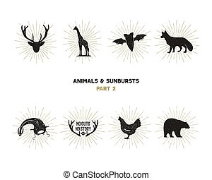Set of wild animal figures and shapes with sunbursts isolated on white background. Black silhouettes giraffe, chicken, fox, deer, catfish and bat . Use as icons or in logo designs. Vector pictograms