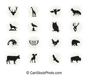 Set of wild animal figures and shapes with sunbursts isolated on white background. Black silhouettes wolf, deer, moose, bison, eagle, seagull, cow, and owl. Animals shapes bundle. Vector