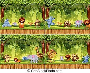 Set of wild animal in jungle
