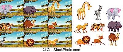 Set of wild animal in nature
