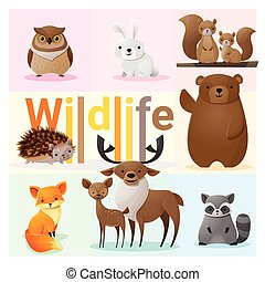 Set of Wild animals 2 - Set of Wild animals , vector ,...