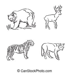 set of wild animals in sketch style
