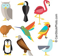 Set of Wild Arctic, Forest and Tropical Birds in Flat Style....