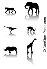 Set of wildlife animals - Six silhouettes with reflex of...