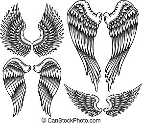 Set of Wings - fully editable vector illustration (editable...