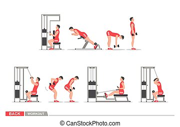 Set of workout for back