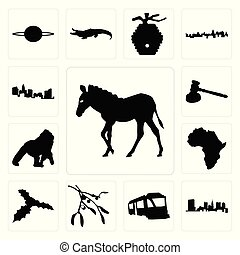Set of zebra outline on white background, state ohio train images mistletoe background icons