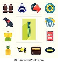 Set of zipper, bat, heater, car crash, pinapple, login screen, buterfly, betta fish, service dog icons