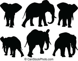set, olifanten, editable, wandeling, silhouettes, vector,...