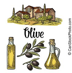 Set olive. Bottle glass, branch with leaves, rural landscape villa