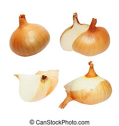 Set onions isolated on white