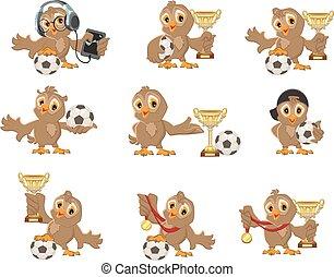 Set owl bird soccer Win in football