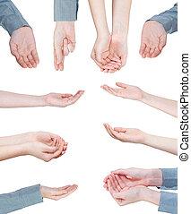 set, palme, -, mano, porzione, gesto