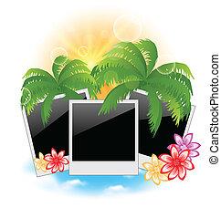 Set photo frame with palms, flowers, seascape background